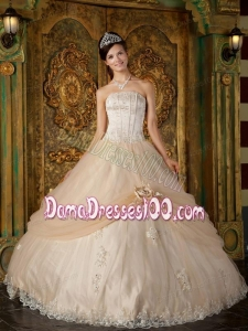 Champagne Ball Gown Strapless Floor-length Appliques Tulle Quinceanera Dress