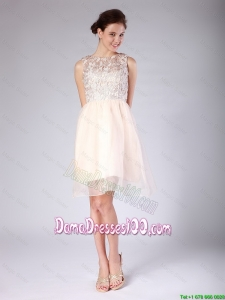 Luxurious Lace Scoop Short Baby Pink Dama Dresses for 2016