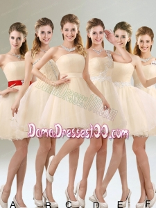 2015 Perfect A Line Organza Dama Dress with Mini Length