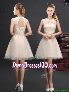 2017 Discount Turndown Short Dama Dress with Appliques and Lace