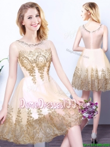 Hot Sale Champagne Zipper Up Short Dama Dress with Appliques and Beading