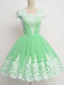 Pretty Square Cap Sleeves Zipper Dama Dress Apple Green Tulle