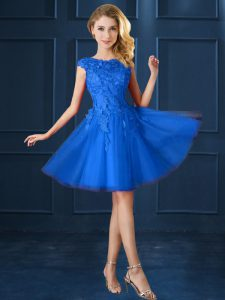 Stunning Blue Lace Up Bateau Lace and Belt Dama Dress for Quinceanera Tulle Cap Sleeves
