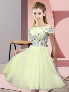 Gorgeous Tulle Short Sleeves Knee Length Court Dresses for Sweet 16 and Appliques