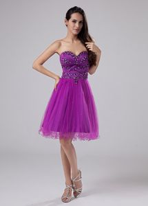 Fuchsia Sweetheart Organza 15 Dresses For Damas with Beading