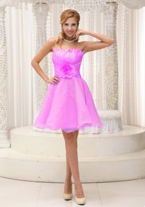 2013 Hand Made Flower Pink Beaded Organza Dresses for Dama