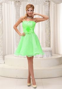 Hand Made Flowers Strapless Damas Dresses in Spring Green