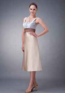 Column Scoop Champagne Belt Tea-length Quince Dama Dresses