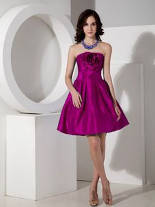 Popular Fuchsia Short Quinceanera Dama Dresses with Flower
