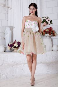 Organza Colorful Short Dama Dresses with Floral Embellishment